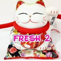fresh 2