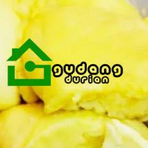 Logo Gudang Durian