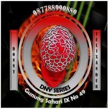 DnyStore06 Logo