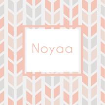 Noyaaa Logo