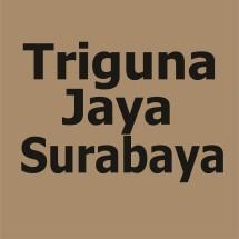 Logo triguna jaya surabaya