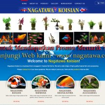 Nagatawa Ornamental Fish