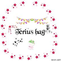 Logo Terius bag