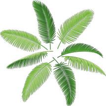 Logo Palem Gadget