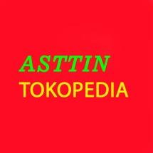 ASTTIN