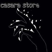 Logo CASARA STORE