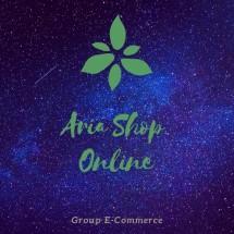 Logo Aria Shop Trade