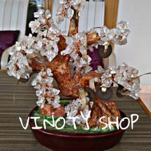 Logo Vinoty shop