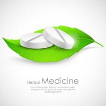 Sumber Herbal 69