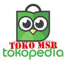 Logo Toko MSR