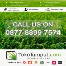 Logo tokorumput