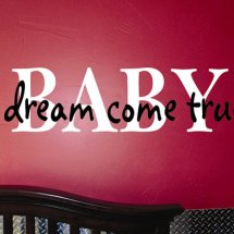 Baby Dream Logo