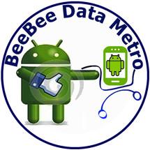 BeeBee Data Metro
