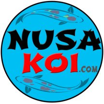 NusaKoi
