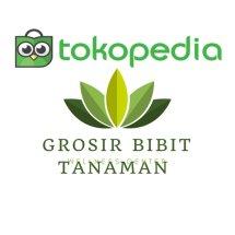 Logo GROSIR BIBIT TANAMAN