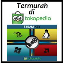 Logo Steam Key