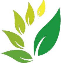 Logo herbal ind