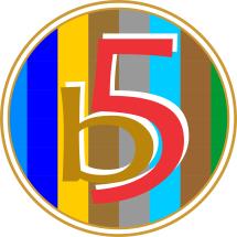 Logo B Five Store