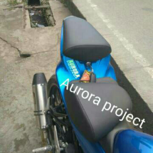 Logo aurora_projectt