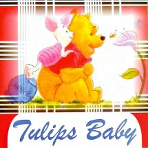 Tulips Baby