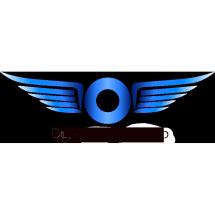 Logo Dylan Michael Shop