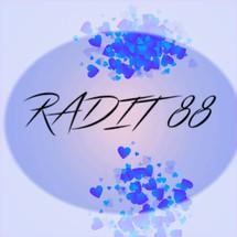 Logo Radith88