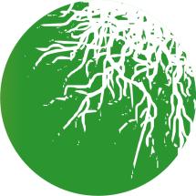 Logo Jamur Lensa
