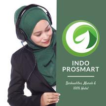 Logo INDOPROSMART