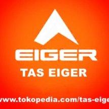 TasEiger Logo