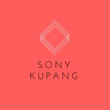 Logo sony kupang