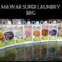 Logo mawar super laundry BDG