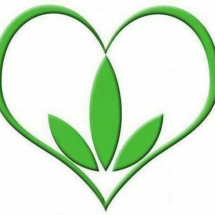 Logo flip shop
