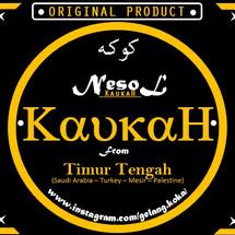 Logo NESOLL_KOKKASHOPS