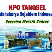 Logo KPO_Tangsel_MSI
