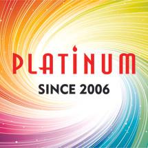 PLATINUM HI-TECH Logo