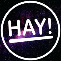 Logo HayBag'S