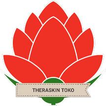 Logo THERASKIN TOKO