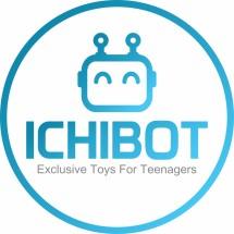 team.ichibot