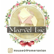 Logo House Of Pomeranian