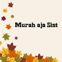 Logo Murah aja sist