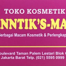 Logo canntik smart