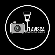 Logo D'Lavisca