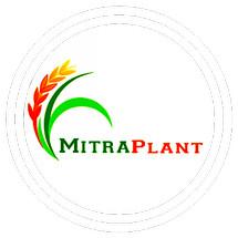 Logo mitraplant