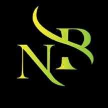 new borobudur motor Logo