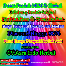 Logo Pusat Prdk MLM & Herbal