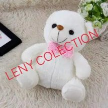 leny colection
