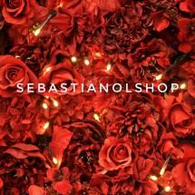 Logo SebastianOlshop