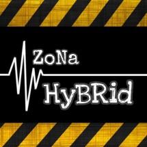 Zona Hybrid