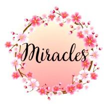 Logo Miracles17