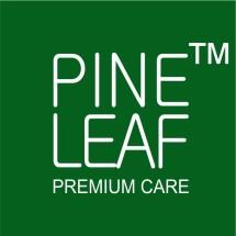 Logo PINE LEAF INDONESIA